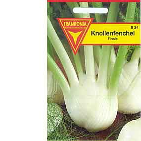 Knollenfenchel Finale
