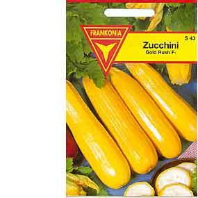 zucchini gold rush f1 hybride gem sesamen. Black Bedroom Furniture Sets. Home Design Ideas