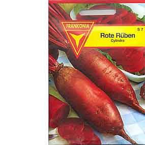Rote Rüben Cylindra